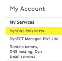 DynDNS Pro/Hosts Link